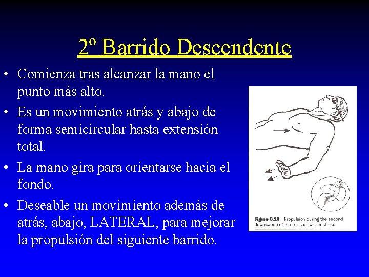 2º Barrido Descendente • Comienza tras alcanzar la mano el punto más alto. •