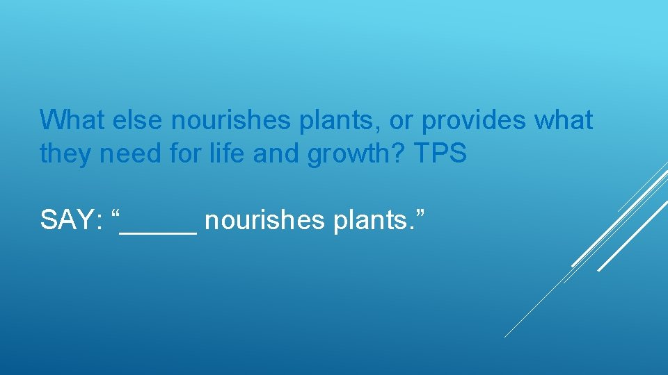 What else nourishes plants, or provides what they need for life and growth? TPS