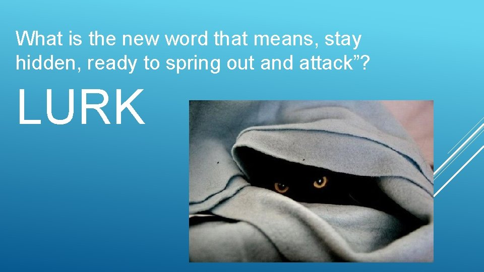 What is the new word that means, stay hidden, ready to spring out and