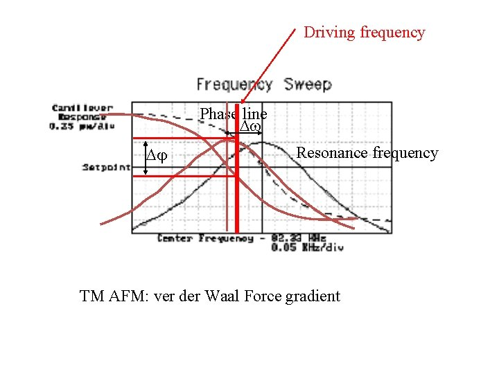 Driving frequency Phase line Resonance frequency TM AFM: ver der Waal Force gradient
