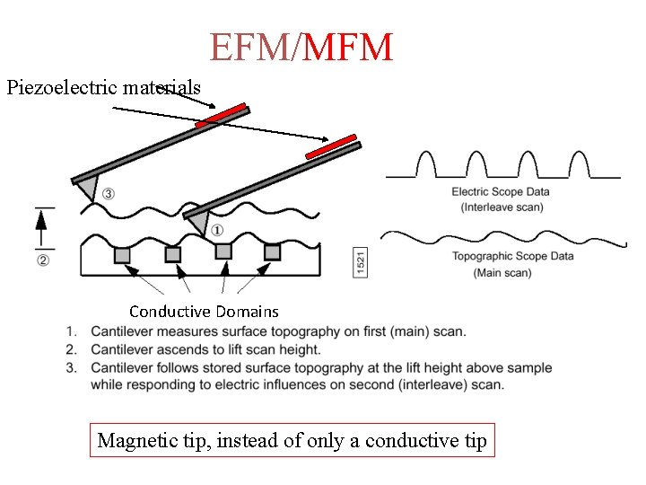 EFM/MFM Piezoelectric materials Conductive Domains Magnetic tip, instead of only a conductive tip