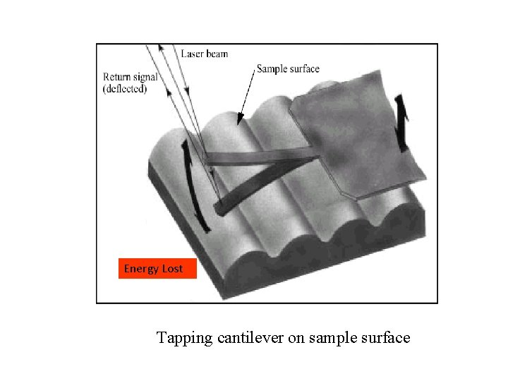 Energy Lost Tapping cantilever on sample surface