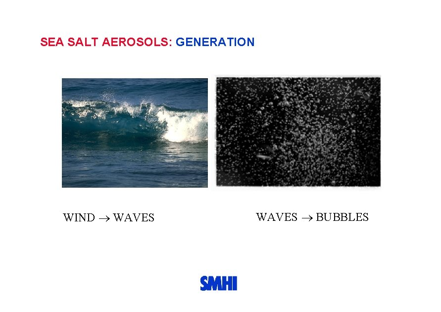 SEA SALT AEROSOLS: GENERATION WIND WAVES BUBBLES