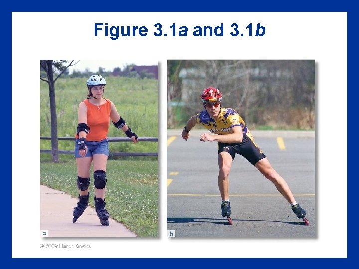 Figure 3. 1 a and 3. 1 b