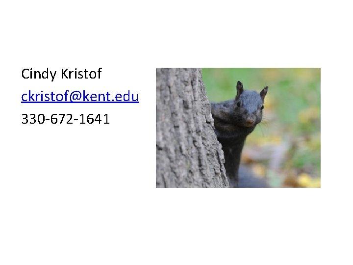 Cindy Kristof ckristof@kent. edu 330 -672 -1641