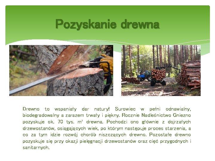 Pozyskanie drewna Drewno to wspaniały dar natury! Surowiec w pełni odnawialny, biodegradowalny a zarazem