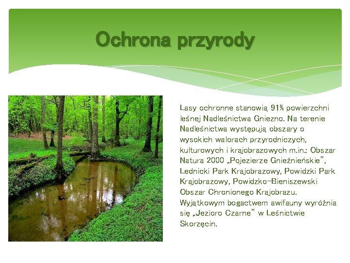 Ochrona przyrody Lasy ochronne stanowią 91% powierzchni leśnej Nadleśnictwa Gniezno. Na terenie Nadleśnictwa występują