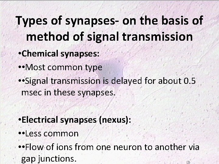 Types of synapses- on the basis of method of signal transmission • Chemical synapses: