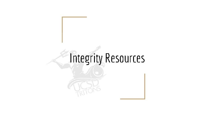 Integrity Resources