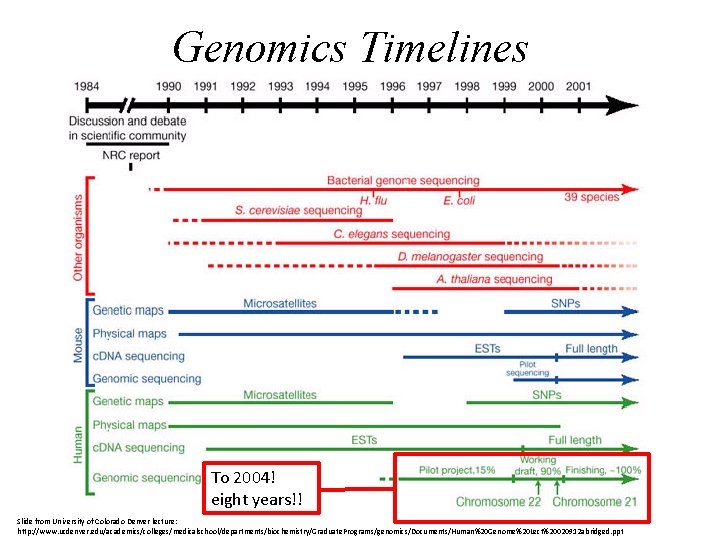 Genomics Timelines To 2004! eight years!! Slide from University of Colorado Denver lecture: http: