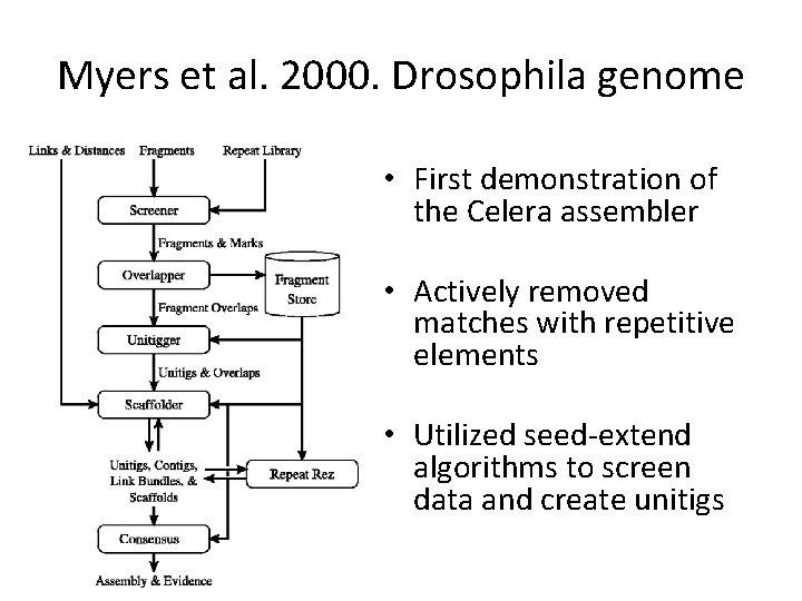 Myers et al. 2000. Drosophila genome • First demonstration of the Celera assembler •