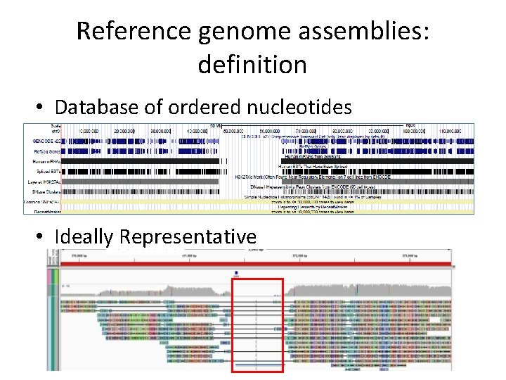 Reference genome assemblies: definition • Database of ordered nucleotides • Ideally Representative