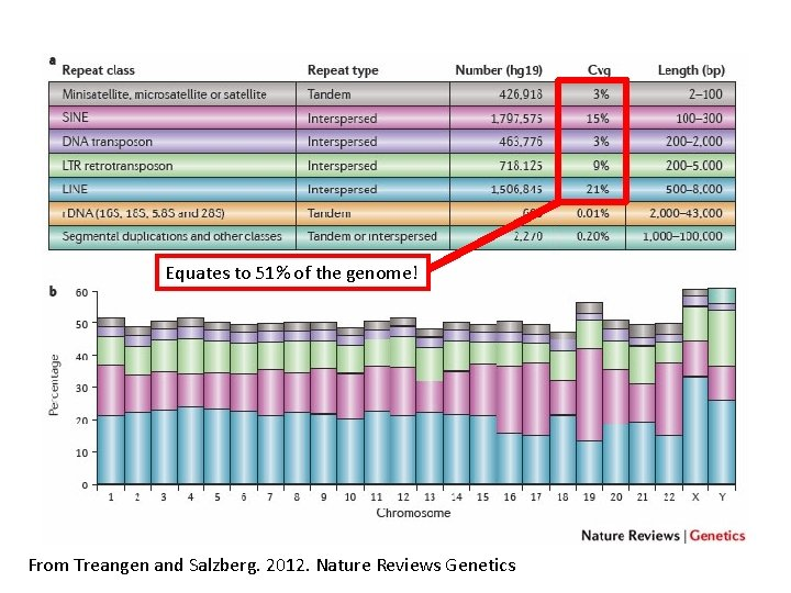 Equates to 51% of the genome! From Treangen and Salzberg. 2012. Nature Reviews Genetics