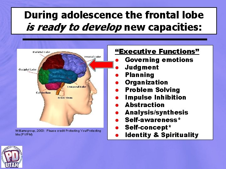 "During adolescence the frontal lobe is ready to develop new capacities: ""Executive Functions"" Williamsgroup,"