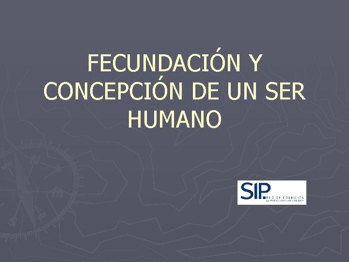 FECUNDACIÓN Y CONCEPCIÓN DE UN SER HUMANO