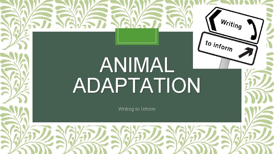 ANIMAL ADAPTATION Writing to Inform