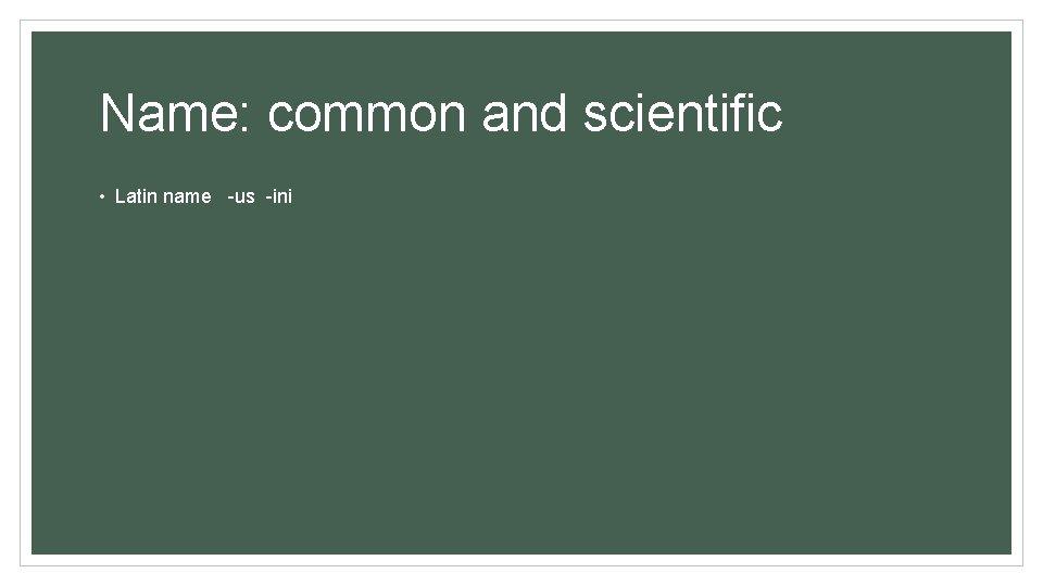 Name: common and scientific • Latin name -us -ini
