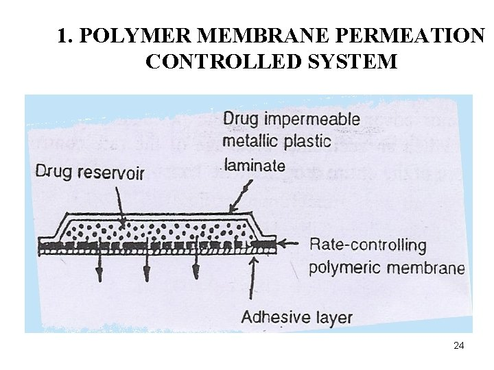 1. POLYMER MEMBRANE PERMEATION CONTROLLED SYSTEM 24