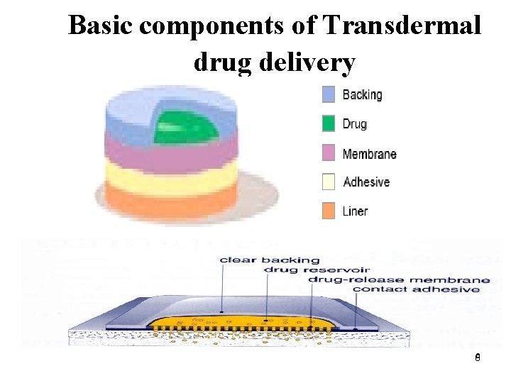 Basic components of Transdermal drug delivery 66