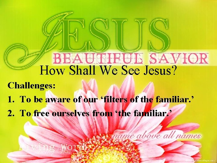 How Shall We See Jesus? Challenges: 1. To be aware of our 'filters of