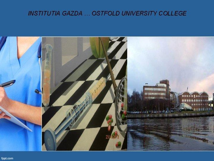 INSTITUTIA GAZDA … OSTFOLD UNIVERSITY COLLEGE