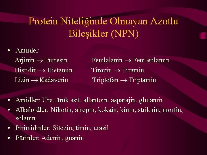Protein Niteliğinde Olmayan Azotlu Bileşikler (NPN) • Aminler Arjinin Putresin Histidin Histamin Lizin Kadaverin
