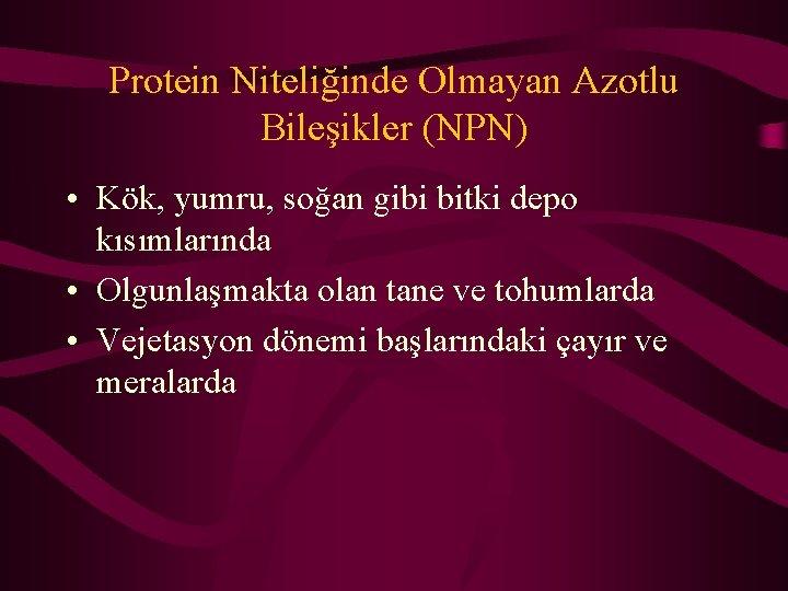 Protein Niteliğinde Olmayan Azotlu Bileşikler (NPN) • Kök, yumru, soğan gibi bitki depo kısımlarında