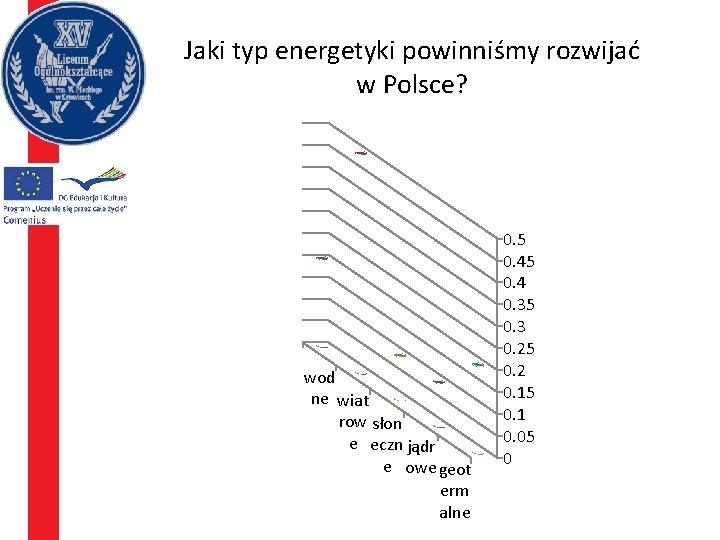 Jaki typ energetyki powinniśmy rozwijać w Polsce? wod ne wiat row słon e eczn