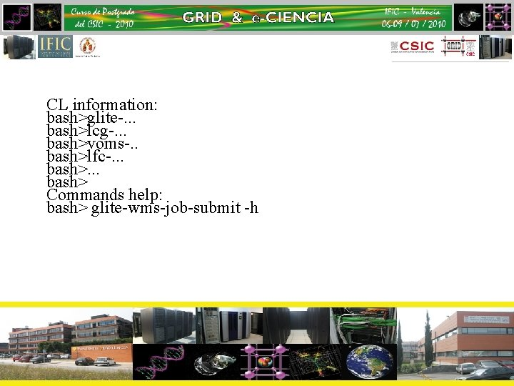 CL information: bash>glite-. . . bash>lcg-. . . bash>voms-. . bash>lfc-. . . bash>