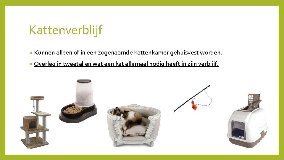 Kattenverblijf • Kunnen alleen of in een zogenaamde kattenkamer gehuisvest worden. • Overleg in