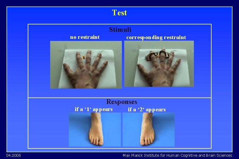 Test Stimuli no restraint corresponding restraint Responses if a ' 1' appears 04. 2006