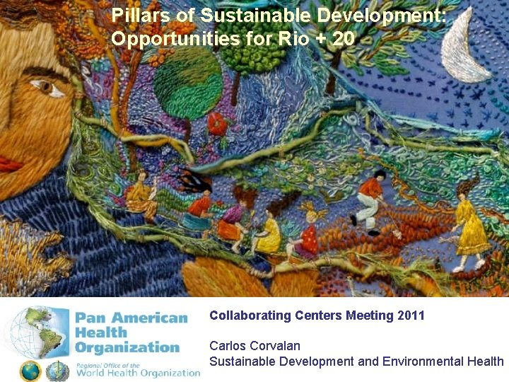 Pillars of Sustainable Development: Opportunities for Rio + 20 Collaborating Centers Meeting 2011 Carlos