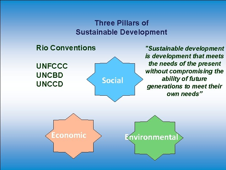 Three Pillars of Sustainable Development Rio Conventions UNFCCC UNCBD UNCCD Economic Social