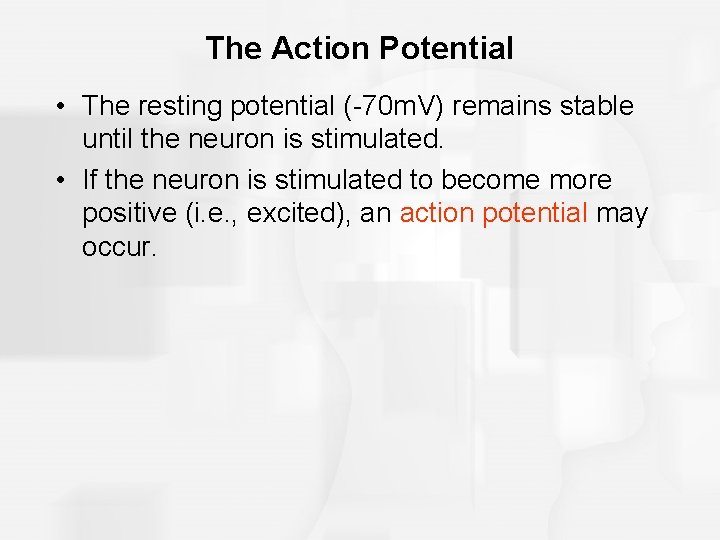 The Action Potential • The resting potential (-70 m. V) remains stable until the