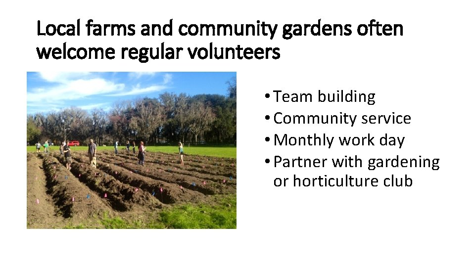 Local farms and community gardens often welcome regular volunteers • Team building • Community