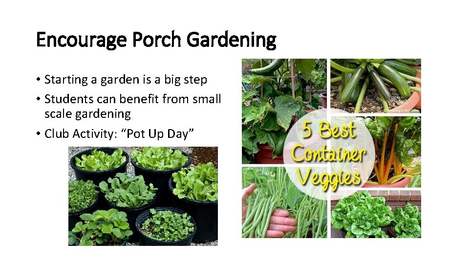 Encourage Porch Gardening • Starting a garden is a big step • Students can