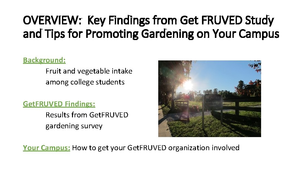 OVERVIEW: Key Findings from Get FRUVED Study and Tips for Promoting Gardening on Your