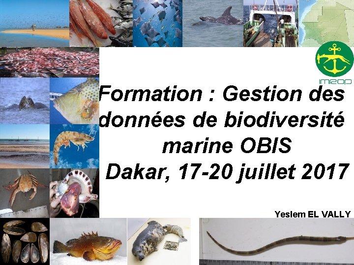 Formation : Gestion des données de biodiversité marine OBIS Dakar, 17 -20 juillet 2017
