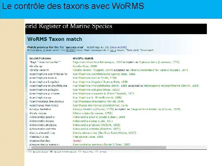 Le contrôle des taxons avec Wo. RMS