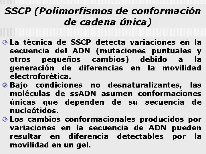 SSCP (Polimorfismos de conformación de cadena única) La técnica de SSCP detecta variaciones en