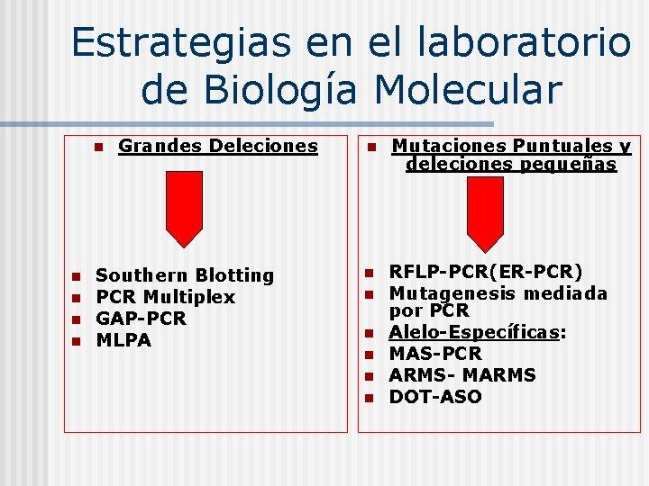 Estrategias en el laboratorio de Biología Molecular n n n Grandes Deleciones Southern Blotting