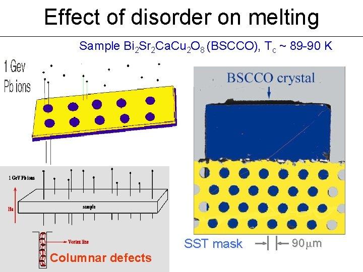 Effect of disorder on melting Sample Bi 2 Sr 2 Ca. Cu 2 O