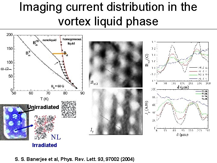 Imaging current distribution in the vortex liquid phase Unirradiated NL Irradiated S. S. Banerjee