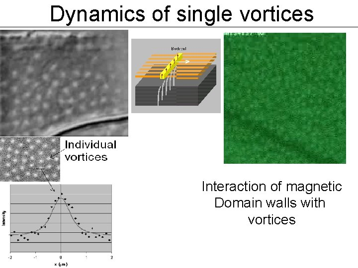 Dynamics of single vortices Interaction of magnetic Domain walls with vortices