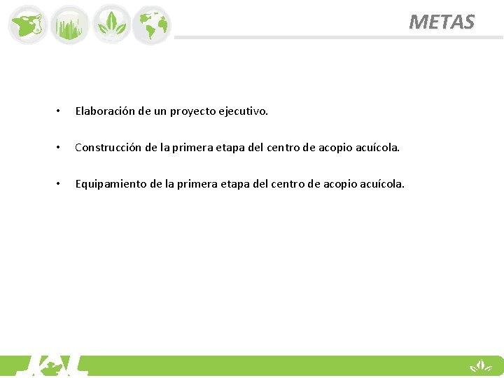 METAS • Elaboración de un proyecto ejecutivo. • Construcción de la primera etapa del