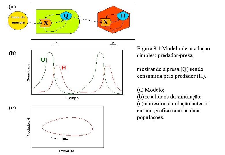 Figura 9. 1 Modelo de oscilação simples: predador-presa, mostrando a presa (Q) sendo consumida