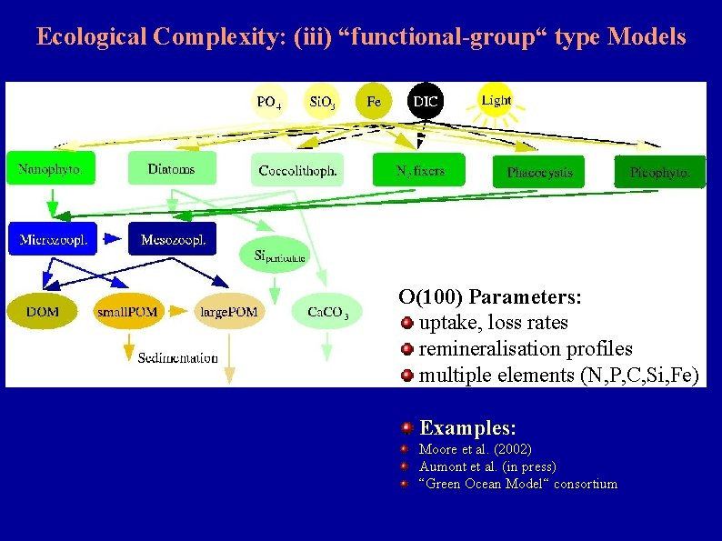 """Ecological Complexity: (iii) """"functional-group"""" type Models O(100) Parameters: uptake, loss rates remineralisation profiles multiple"""