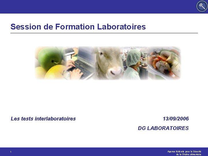 Session de Formation Laboratoires Les tests interlaboratoires 13/09/2006 DG LABORATOIRES 1 Agence fédérale pour