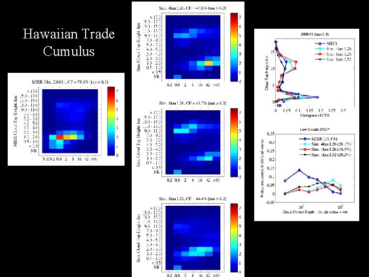 Hawaiian Trade Cumulus