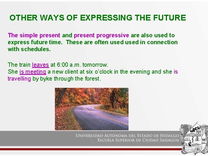 OTHER WAYS OF EXPRESSING THE FUTURE The simple present and present progressive are also